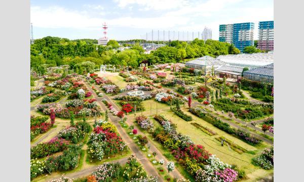 COSSAN at 京成バラ園2021 イベント画像1