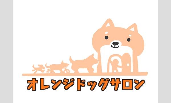 愛犬の介護予防セミナー イベント画像1