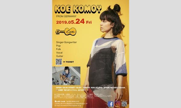 KOE KOMOY Live 2019 @音cafe Luck イベント画像1