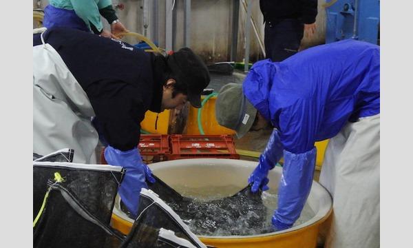 土田酒造酒造り体験2017 イベント画像1