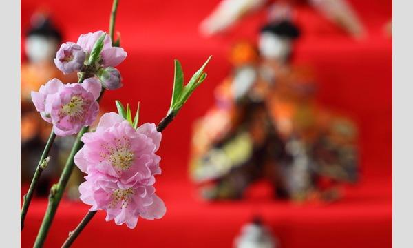 日本を嗜む「ひな祭りパーティ」を横浜で開催。 in神奈川イベント