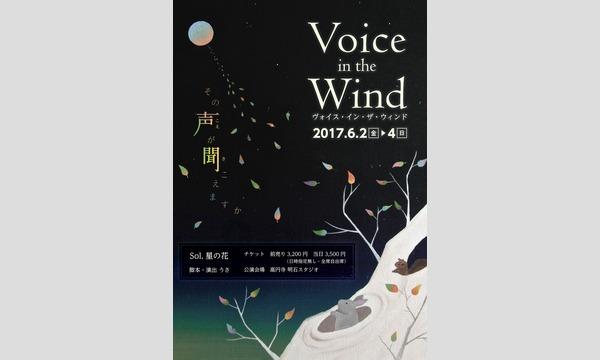 Sol.星の花 旗上げ公演「Voice in the Wind」ーヴォイス・イン・ザ・ウインドー in東京イベント