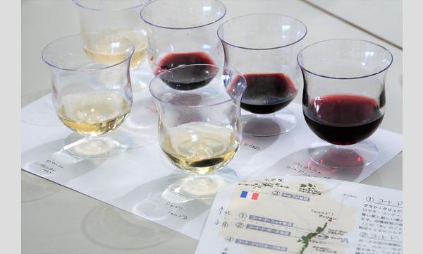 ワインの基本 ー きほんの「ん」 イベント画像1
