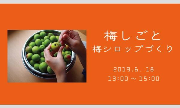 マチノマノマの梅しごと~梅シロップづくり~ イベント画像1