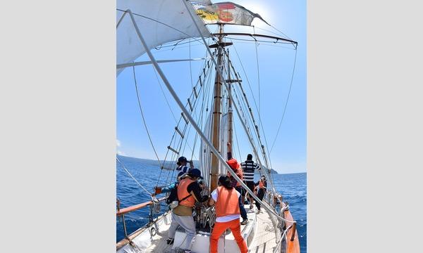 西伊豆の海で海賊冒険航海! イベント画像3
