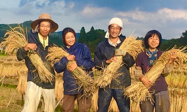 八芳園の大人の食育セミナー お茶にも自然発酵を!~健康に役立つ「発酵」~ イベント画像1