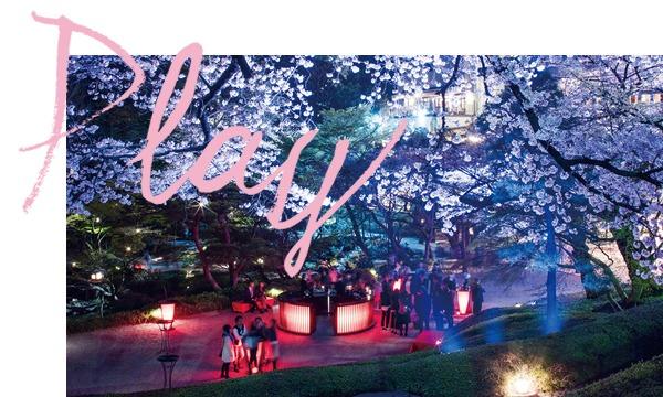 3/31(金)19:00~ 桜花爛漫祭「YATAI」@八芳園 in東京イベント