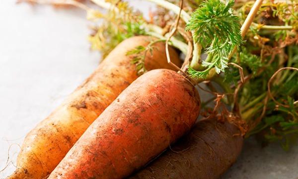 青森はる農園さんの自然栽培食材たっぷり特別メニューを愉しむ イベント画像2