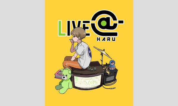 LIVE-@-(ライブエー)HARU イベント画像2