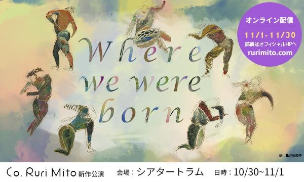 Co. Ruri Mito 「Where we were born」ドネーションチケット11月1日14時開演観劇 イベント画像1