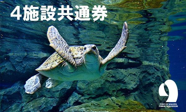 A.4施設共通券購入(名古屋港水族館+名古屋海洋博物館+ポートビル展望室+南極観測船ふじ) イベント画像1