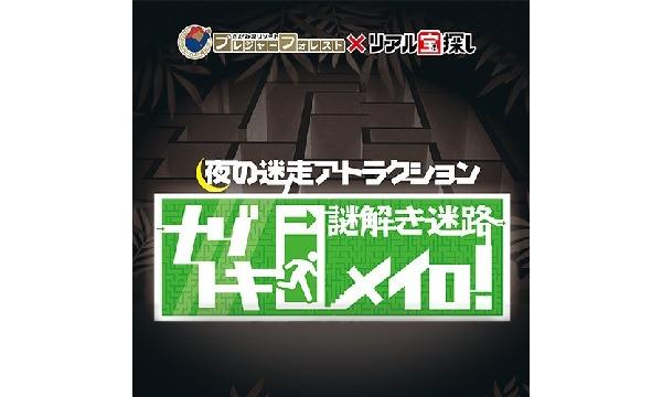 夜の迷走アトラクション「ナゾトキメイロ!」