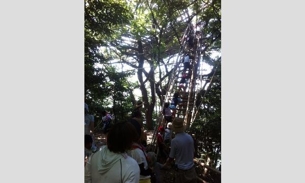 関西アウトドアーズスクールの無人島!二名良日の夏のツリーハウスづくりワークキャンプ2019イベント