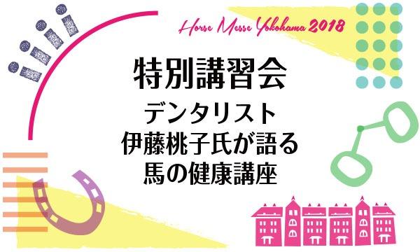 第2回Horse Messe(ホースメッセ)特別講習会 デンタリスト伊藤桃子氏が語る 馬の健康講座 イベント画像1
