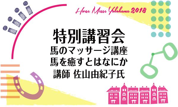 第2回Horse Messe(ホースメッセ)特別講習会 馬のマッサージ講座馬を癒すとはなにか 講師 佐山由紀子氏 イベント画像1