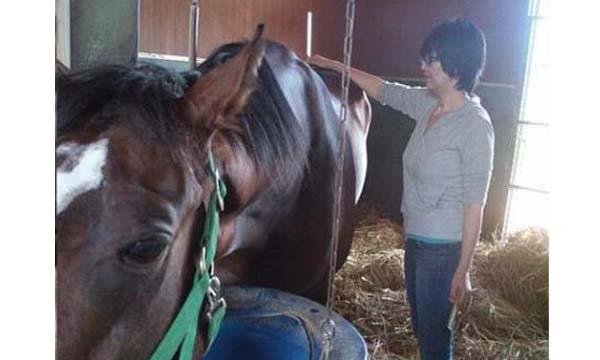 第2回Horse Messe(ホースメッセ)特別講習会 馬のマッサージ講座馬を癒すとはなにか 講師 佐山由紀子氏 イベント画像2