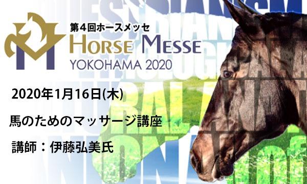 第4回Horse Messe(ホースメッセ) 馬のためのマッサージ講座 講師:伊藤弘美氏 イベント画像1