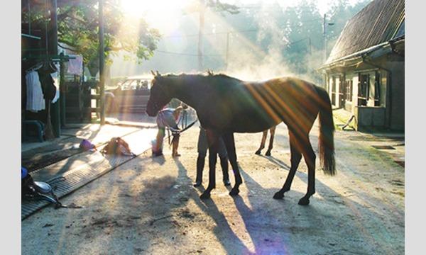 第2回Horse Messe(ホースメッセ)特別講習会 馬のリハビリについて 講師:沖崎誠一郎氏 【無料講座】 イベント画像2