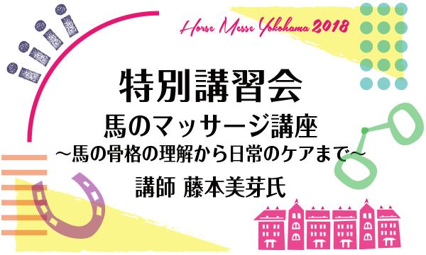 1/22(月) 第2回Horse Messe(ホースメッセ)特別講習会 馬のマッサージ  講師 藤本美芽氏 イベント画像1