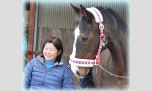1/22(月) 第2回Horse Messe(ホースメッセ)特別講習会 馬のマッサージ  講師 藤本美芽氏 イベント画像2