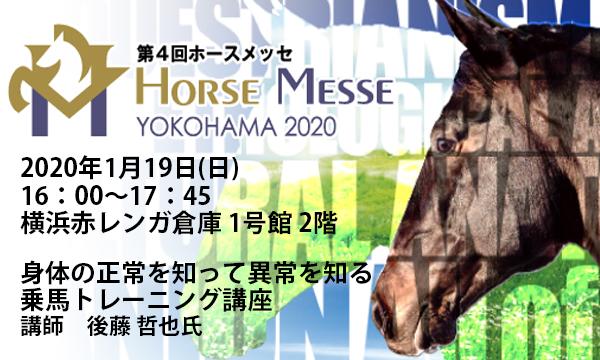 第4回Horse Messe(ホースメッセ)特別講習会 身体の正常を知って異常を知る乗馬トレーニング講座 イベント画像1