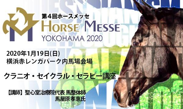 第4回Horse Messe(ホースメッセ)特別講習会 クラニオ・セイクラル・セラピー講座 講師:馬屋原孝惠 イベント画像1