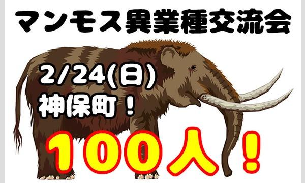 2/24(日)マンモス異業種交流会!(ビジネス&友達&恋人) イベント画像1