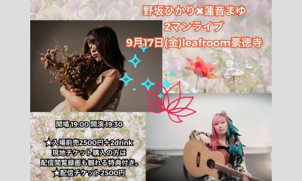 9/17(金)有料限定配信チケット 野坂ひかり×蓮音まゆ2マンライブ