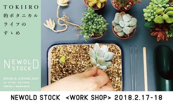 多肉植物の寄せ植えワークショップ「TOKIIRO的ボタニカルライフのすゝめ。」@『NEWOLD STOCK』(浅草蔵前) イベント画像1