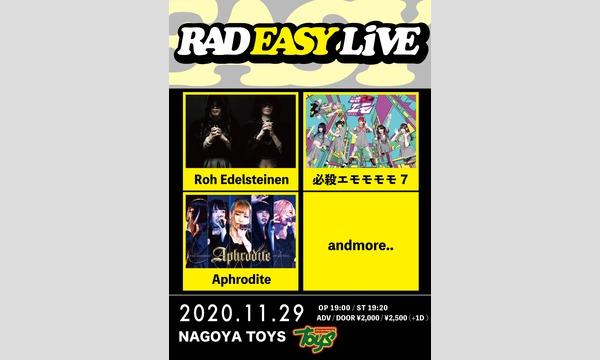 TOYS NAGOYAのRAD EASY LIVEイベント