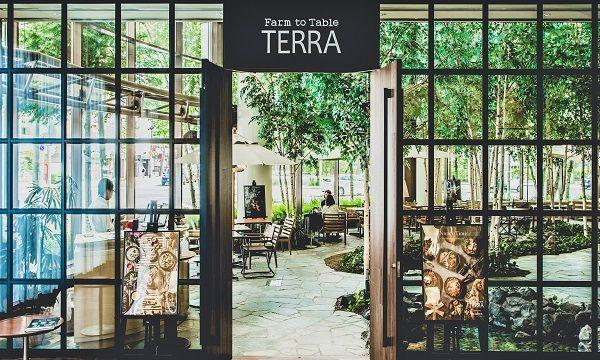 Farm to Table TERRA お食事券 イベント画像3