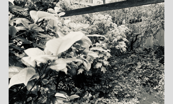 【対面講義】寄付講座「知恵の庭」第2シーズン第2回「絵をつくる、絵をうつす」(松平莉奈) イベント画像1