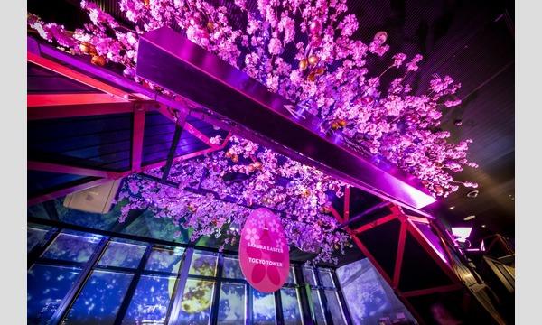 『東京タワーメインデッキ』公式オンラインチケット イベント画像3