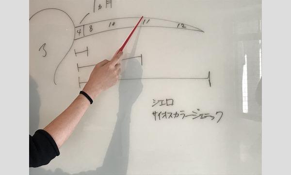 失敗させない「セルフヘアカラー」セミナー in仙台 イベント画像2