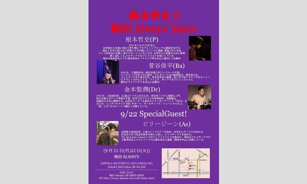 生配信ライブ!!  根本哲史3 梅田ALWAYS 2days  2020/9/21.22 イベント画像1