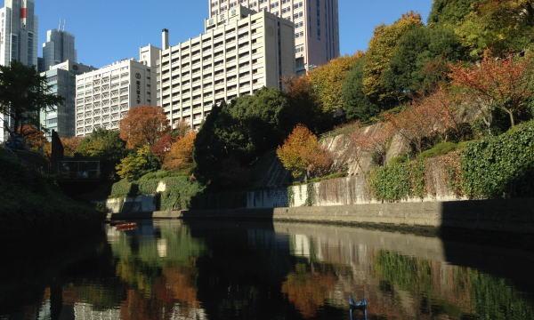 11/25開催 午後便 神田川 紅葉クルーズ/AUTUMN LEAVES CRUISE 2017 in東京イベント