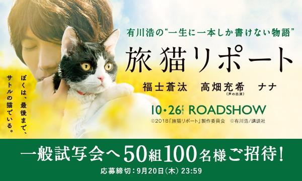 映画『旅猫リポート』試写会に50組100名様ご招待! イベント画像1