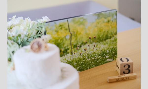 【オンライントーク】石野千尋×渡邉真弓「写真がある日々。大切な時間。」 イベント画像2