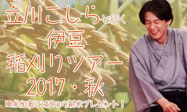 立川こしらと行く!伊豆稲刈りツアー2017・秋 イベント画像1